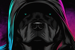 Black Dog Glowing Eyes 4k Wallpaper