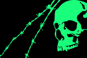 Black Green Skull Minimalist Wallpaper