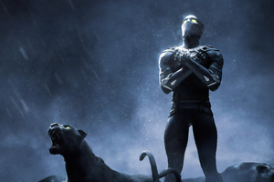 Black Panther 4k Rise Up