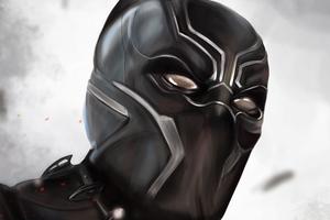 Black Panther Closeup Wallpaper