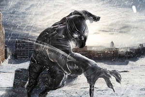 Black Panther In Snow Wallpaper