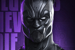 Black Panther Legend Never Die 4k