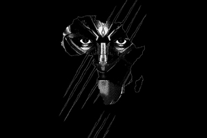Black Panther Real 3D Poster Wallpaper