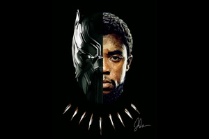 Black Panther T Challa 2018 Artwork 5k