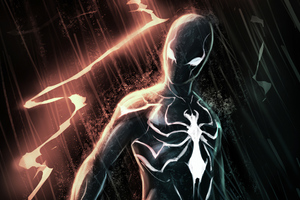 Black Spiderman Suit