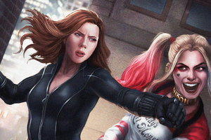 Black Widow Vs Harley Quinn Wallpaper