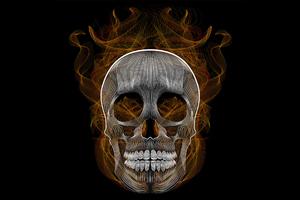 Blend Skull Vector Illustration Wallpaper