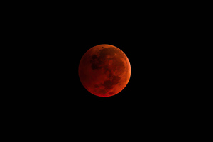 Blood Moon Night 4k Wallpaper