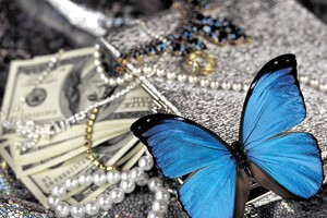 Blue Butterfly On Pearls Wallpaper