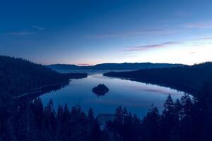 Blue Filtered Nature