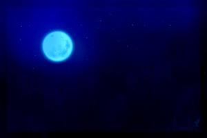 Blue Moon Dark Night Wallpaper