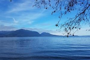 Blue Sky Nature 4k