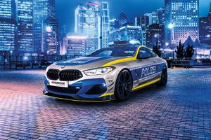 Bmw Polizei Cop Car
