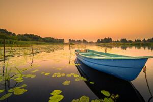 Boat Lily Water Lake Wallpaper
