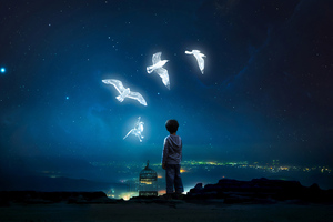 Boy Child Freeing Birds Wallpaper