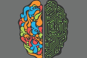 Brain Minimalism