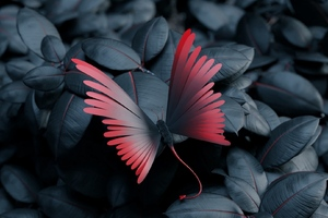Butterfly Leaves Artwork Wallpaper