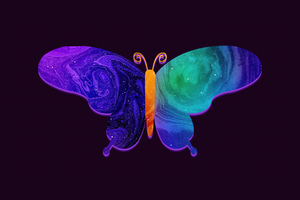 Butterfly Minimal Dark 5k Wallpaper