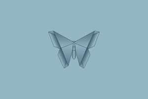 Butterfly Symmetry 5k Wallpaper