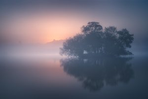 Calm Mist Morning 8k Wallpaper