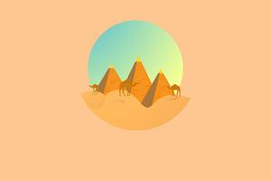 Camel Desert Minimal 4k