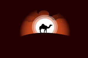 Camel Minimal Art 5k Wallpaper