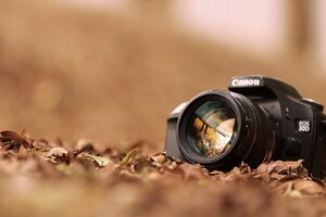 Canon EOS 3D Wallpaper