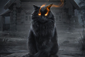 Cat Fire Eyes Wallpaper