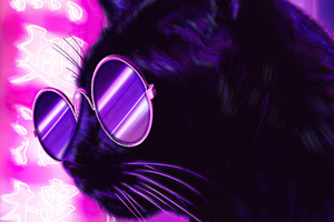 Cat Glasses Neon Purple Nights 4k