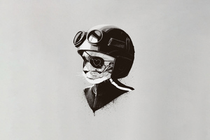 Cat Helmet Minimal Art 5k Wallpaper
