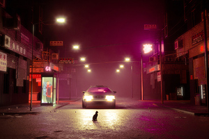Cat Road Delorean 4k Wallpaper