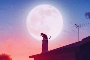 Cat Roof Big Moon 4k