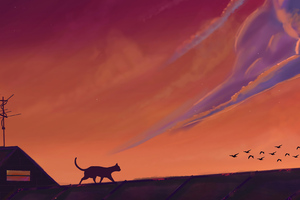 Cat Sky Nature Scenery Digital Art 4k