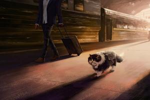 Cat The Traveller Wallpaper