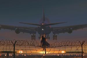 Catching The Flight 4k Wallpaper