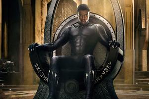 Chadwick Aaron Boseman Black Panther 8k Wallpaper