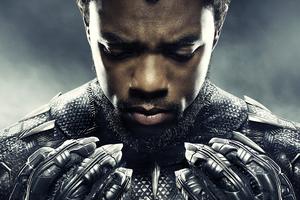 Chadwick Boseman Black Panther 2018 Movie