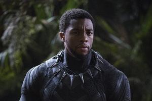 Chadwick Boseman Black Panther 4k 2018