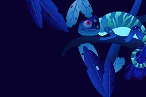 Chameleon 4k Wallpaper