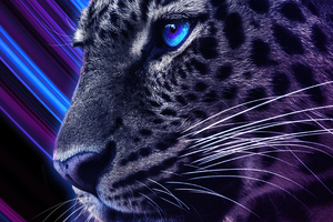 Cheetah Galaxy Eyes 4k