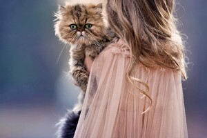 Children And Cat Cute Wallpaper