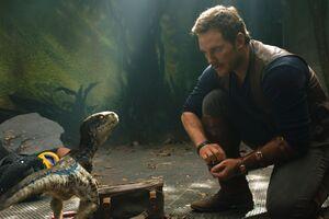 Chris Pratt And Little Raptor Jurassic World Fallen Kingdom 5k