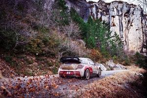 Citroen Ds3 Rally Fall Wallpaper