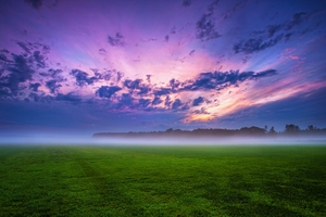 Cloud Field Fog Grass Landscape 4k Wallpaper