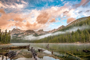 Cloud Fog Forest Lake Mountain