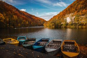 Colored Row Boats 5k Wallpaper