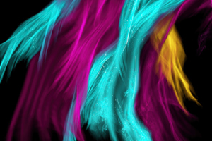 Colorful Feathers Abstract 4k Wallpaper