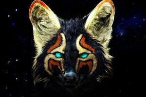 Colorful Fox Artwork