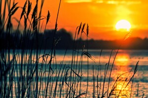 Crops Sunset Lake Wallpaper