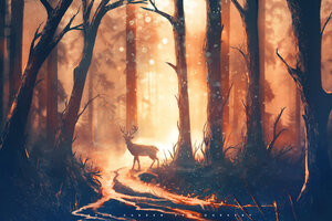 Deer Forest Sunbeams Wallpaper